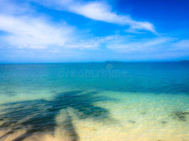 De dromerige schaduw van de strandpalm stock afbeelding