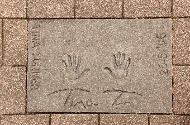 De druk van Tina Turner royalty-vrije stock fotografie