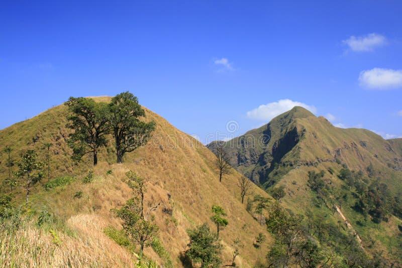 De duidelijke hemel van de berg royalty-vrije stock foto