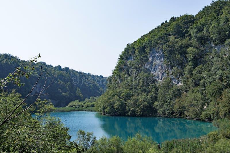 De duidelijke turkooise blauwe lagune, bij Plitvice-Meren Nationaal Park, Kroatië stock fotografie