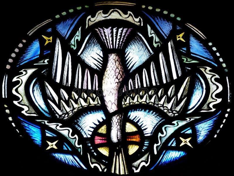 De Duif (heilige geest) in gebrandschilderd glas royalty-vrije stock afbeelding