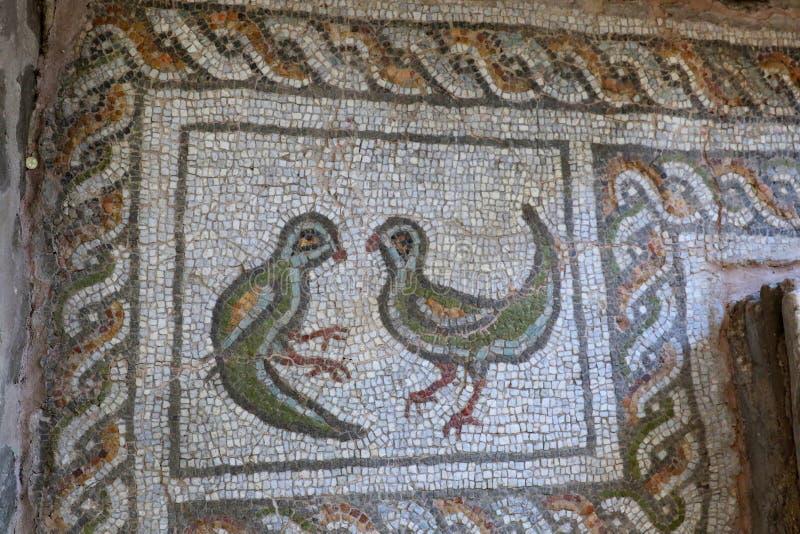De Duif: symbool van de Heilige Geest die bij het doopsel van Jesus in de rivier van Jordanië verscheen stock foto's