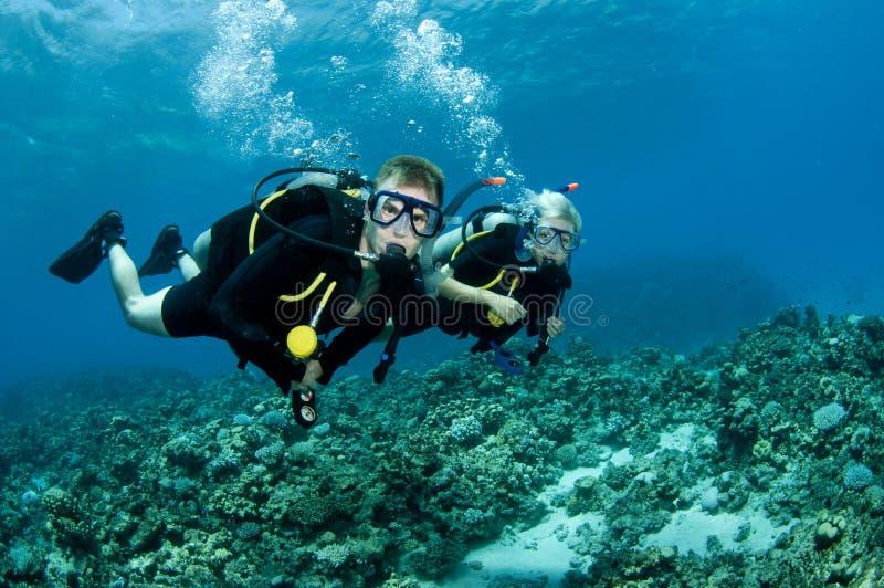 De duikers van Suba royalty-vrije stock foto