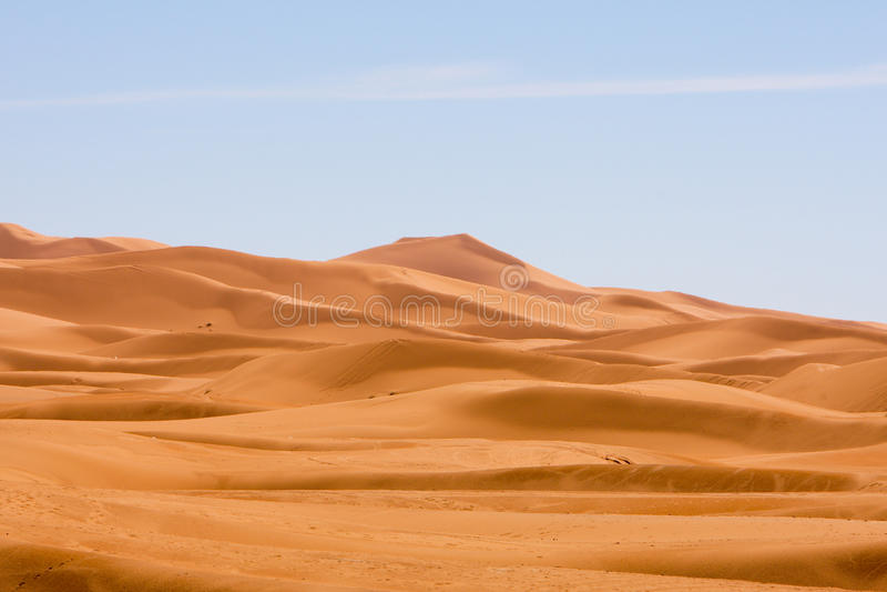 De duinen stock fotografie