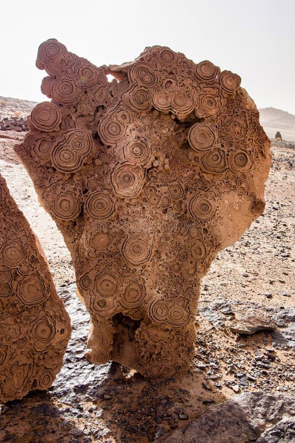 In de duinen van Erg Chebbi dichtbij Merzouga in zuidoostelijk Marokko stock foto
