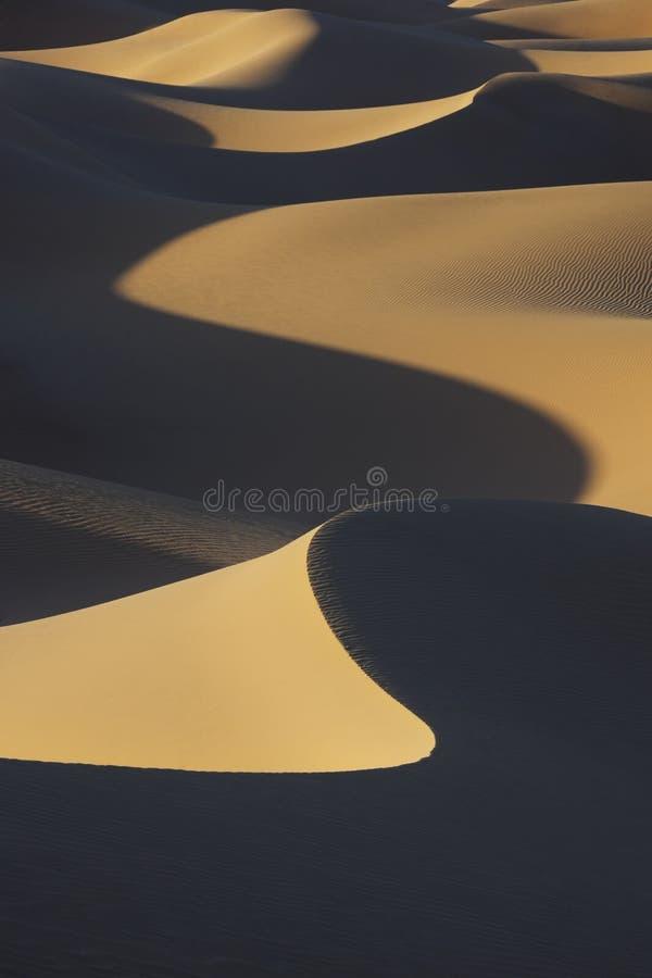 De duinen van het de woestijnzand van de Sahara met donkere schaduwen. stock foto