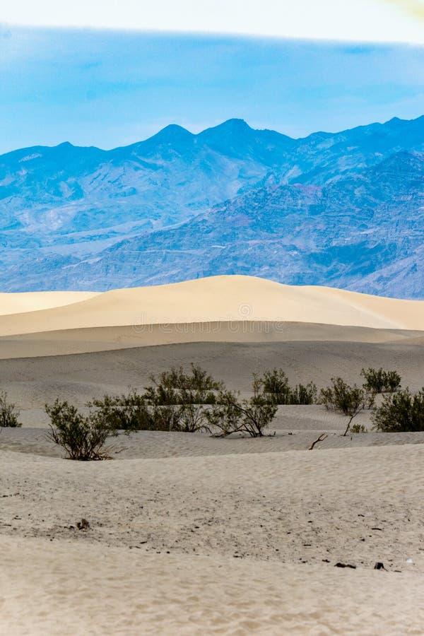 De Duinen van het Mesquitezand van het Nationale Park van de Doodsvallei in Californië in de zomer royalty-vrije stock afbeeldingen