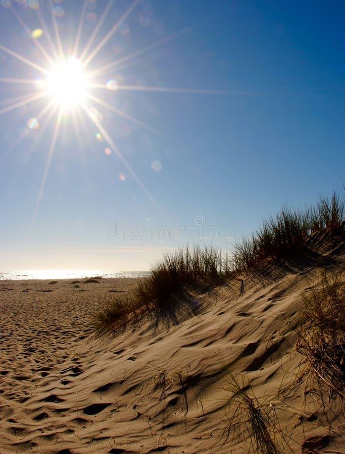 De duinen van het strand stock afbeeldingen