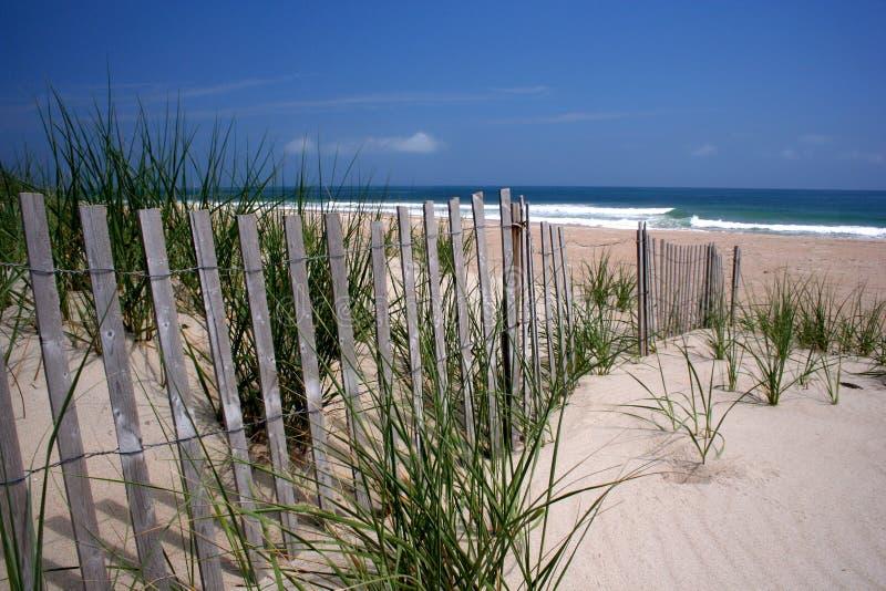 De Duinen van het strand royalty-vrije stock afbeeldingen