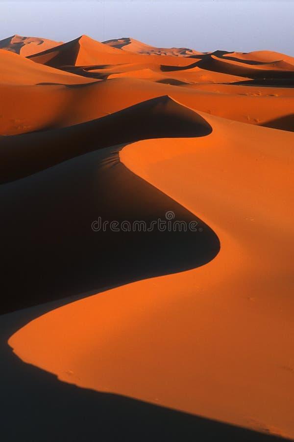 De duinen van het zand stock fotografie