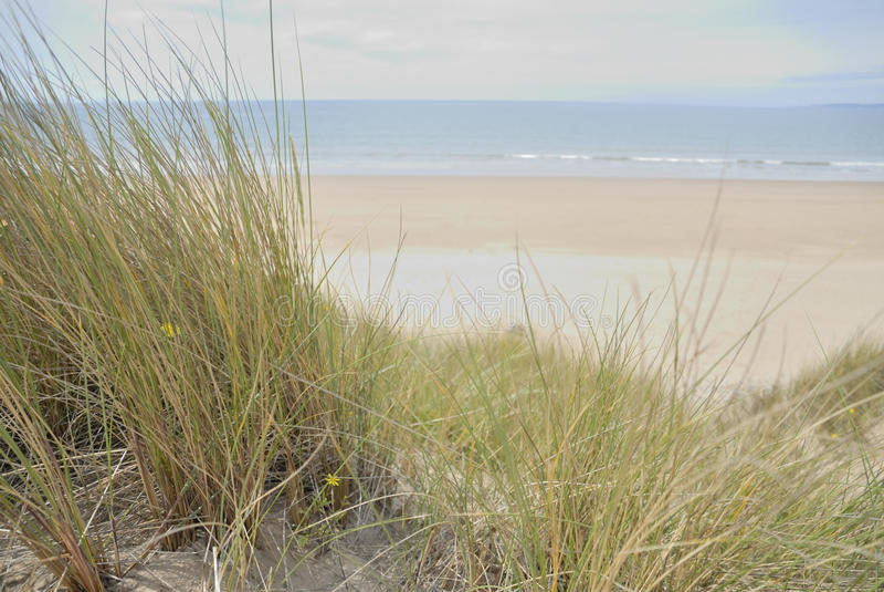 De duinen van het zand bij strand royalty-vrije stock afbeelding