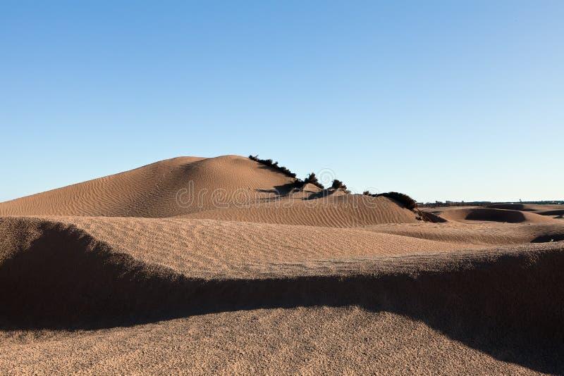 De duinen van het zand in de woestijn van de Sahara stock foto's