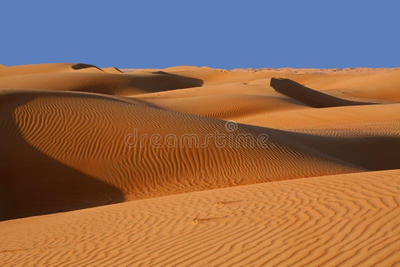 De duinen van het zand in de woestijn van het Zand Wahiba in Oman stock fotografie