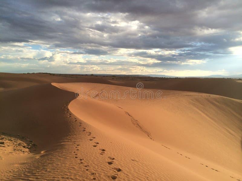 De Duinen van het zand en het Af:drukken van de Voet stock fotografie