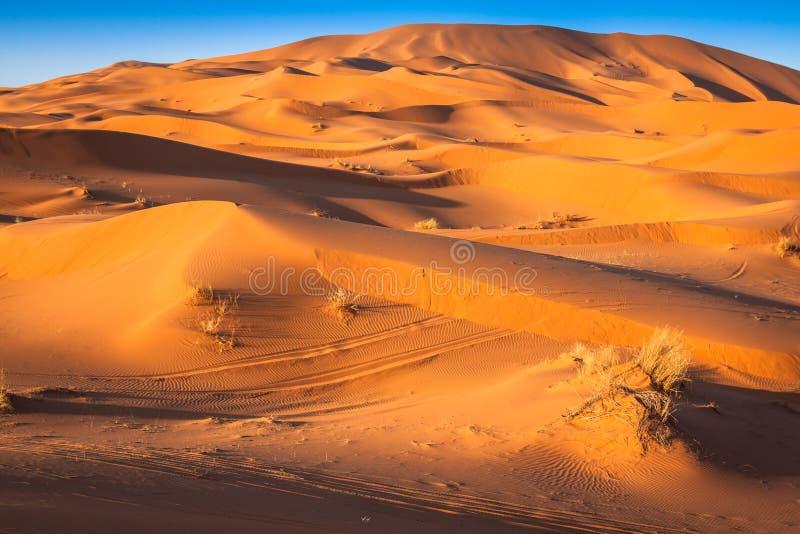 De Duinen van het zand van Erg Chebbi int stock foto