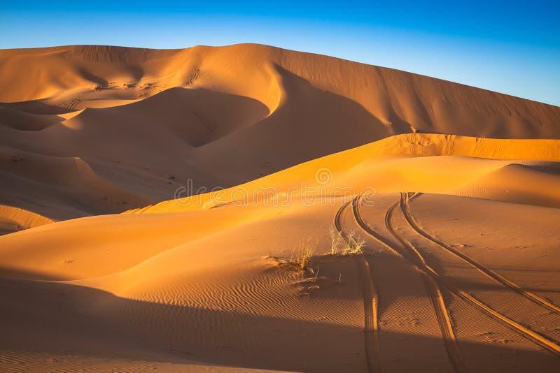 De Duinen van het zand van Erg Chebbi int royalty-vrije stock foto's