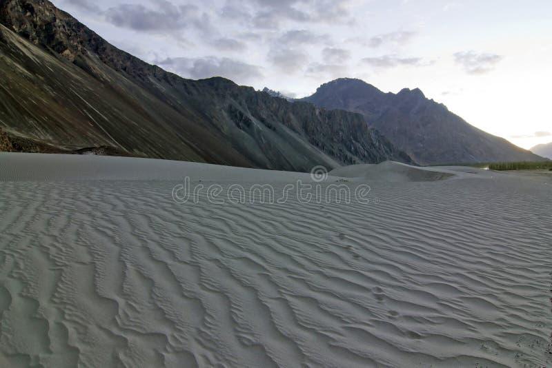 De duinen van het zand in Nubra Vallei, India royalty-vrije stock foto