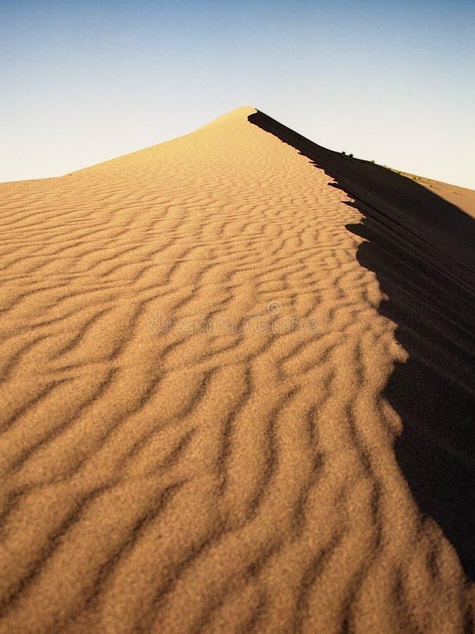 De Duinen van het Zand van Bruneau stock fotografie