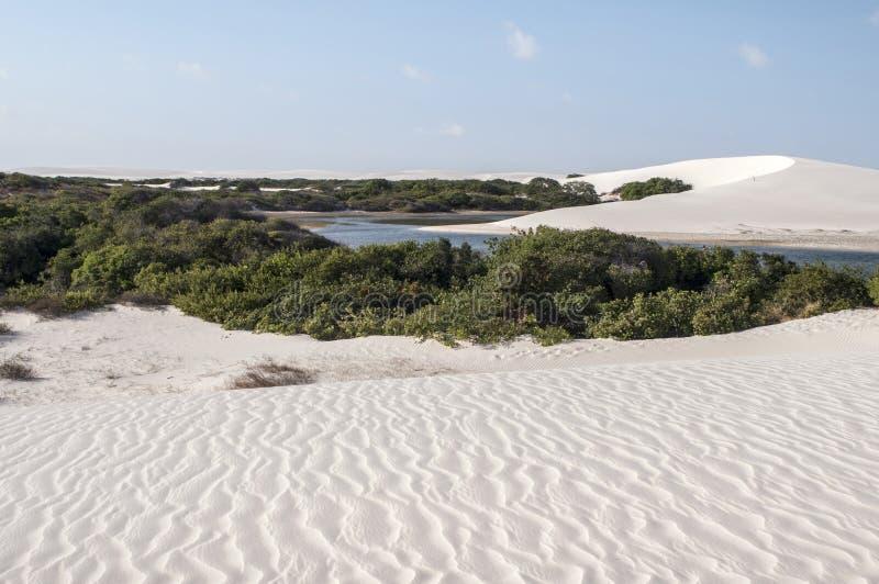 De duinen van het zand van Lencois Maranheses in Brazilië royalty-vrije stock fotografie