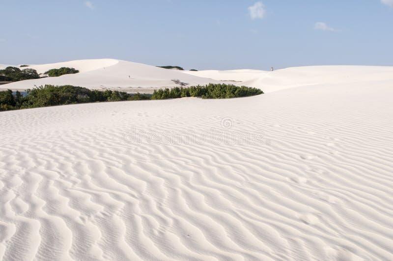 De duinen van het zand van Lencois Maranheses in Brazilië stock afbeeldingen