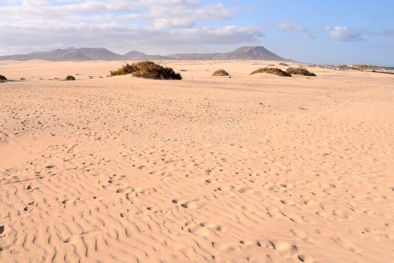 De duinen van het zand in de woestijn stock fotografie