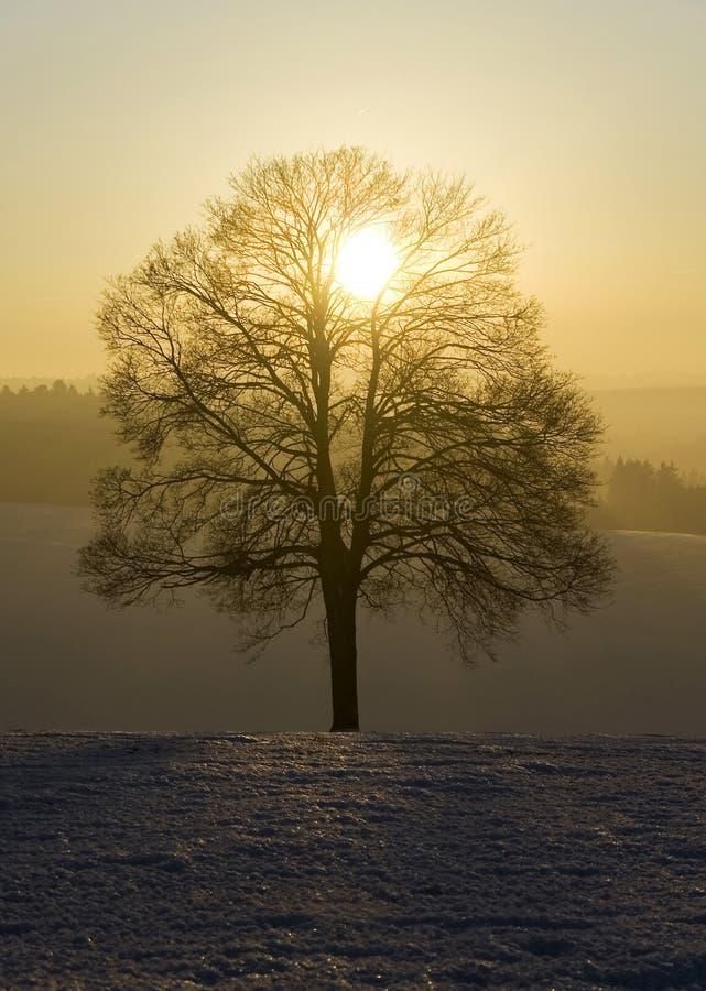 De Duitse winter I royalty-vrije stock afbeeldingen