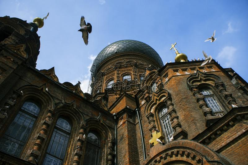 De duiven vliegen op hun ruggen rond Sophia Cathedral royalty-vrije stock foto