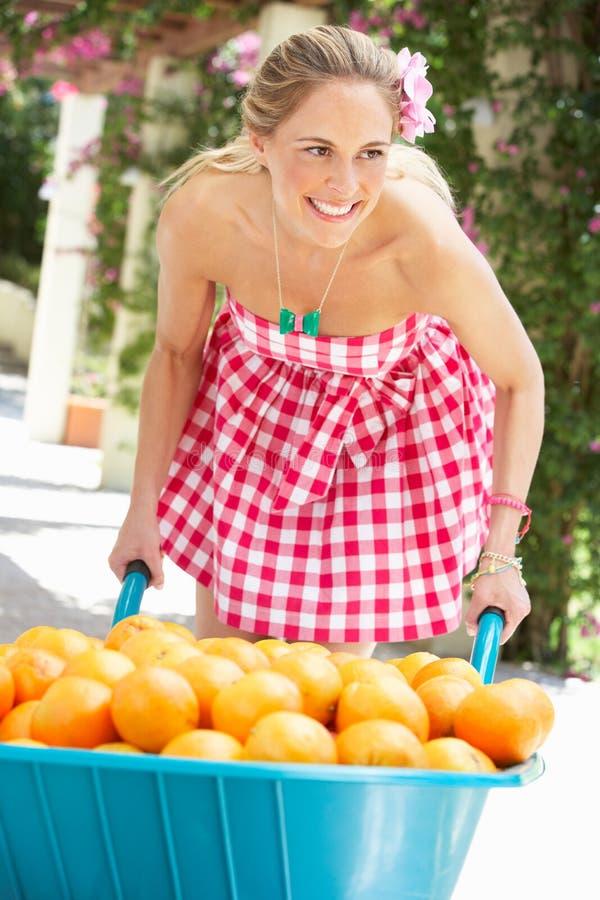 De Duwende Kruiwagen Van De Vrouw Die Met Sinaasappelen Wordt Gevuld Royalty-vrije Stock Afbeeldingen