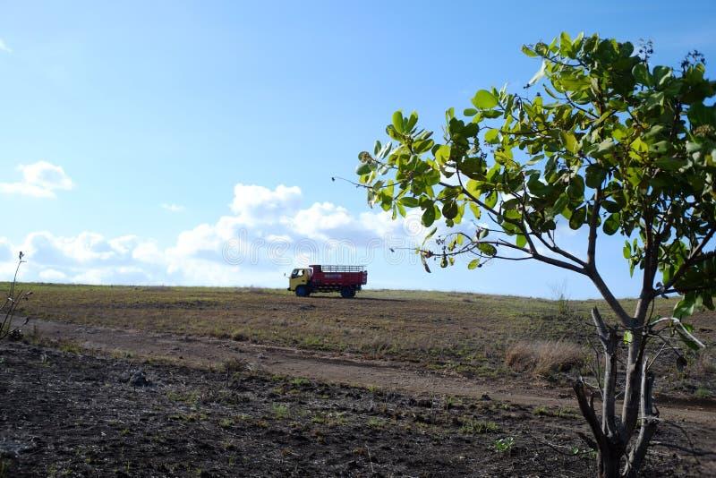 De dwars alternatieve stegen van de vrachtwagenlading van savanne stock foto