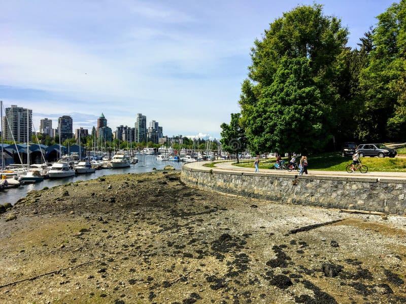 De eb in Steenkoolhaven als mensen geniet van een mooie dag die en langs de zeedijk in Stanley Park, in Vancouver lopen biking royalty-vrije stock foto's