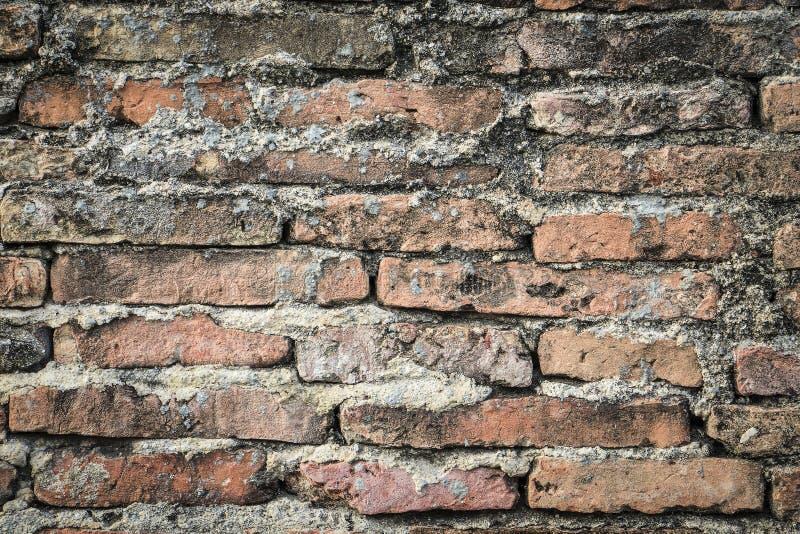 De echte middeleeuwse bakstenen muuroppervlakte kan als achtergrondpatroon of textuur met echt licht bij oude stad Songkhla Thail stock foto
