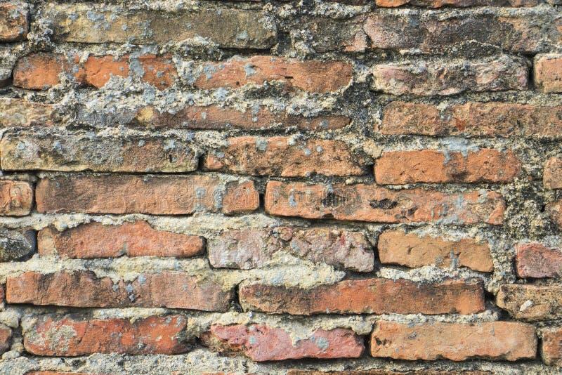 De echte middeleeuwse bakstenen muuroppervlakte kan als achtergrondpatroon of textuur met echt licht gebruiken stock afbeeldingen