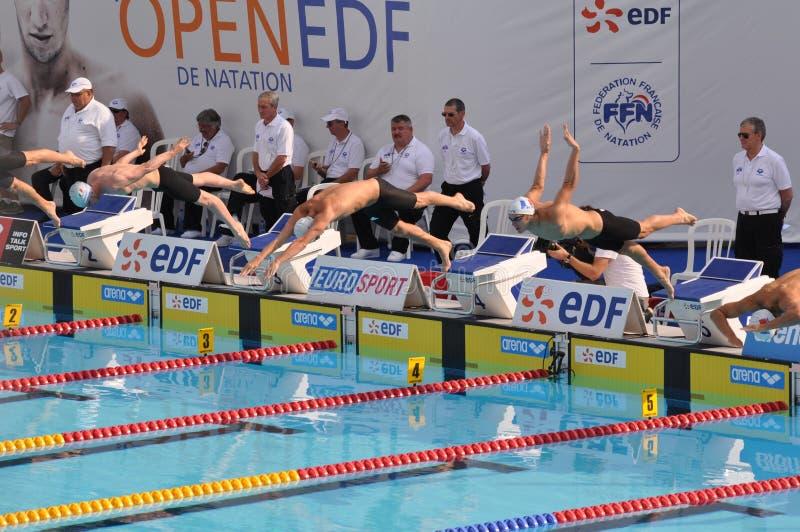 de edf natation 2010 öppna paris royaltyfri foto