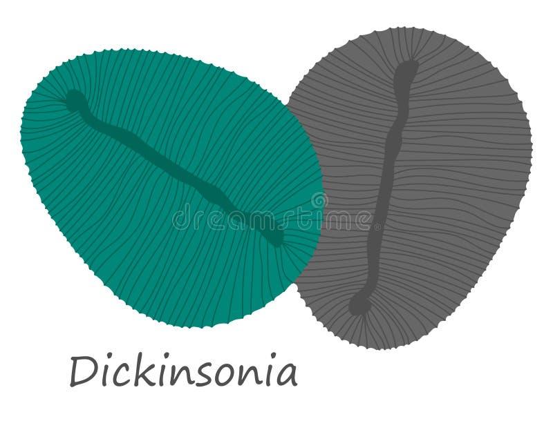 De ediacaran-era van dierendickinsonia fossielenillustratie royalty-vrije stock foto