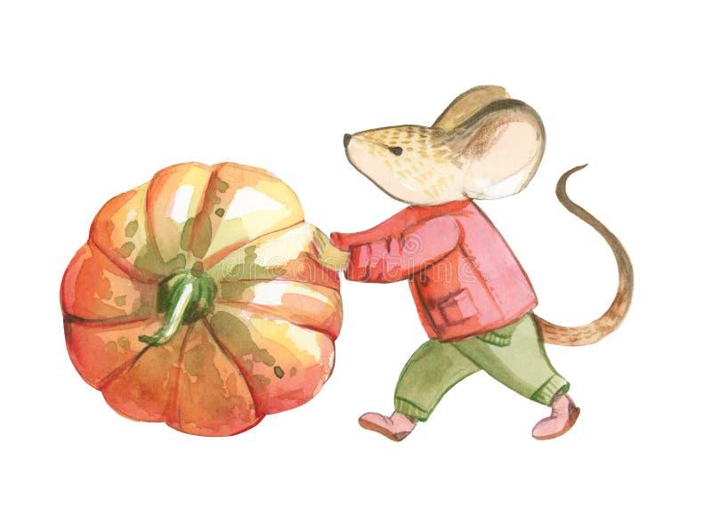 De een weinig grijze muis in rood jasje en groene broek werpt het rood royalty-vrije illustratie