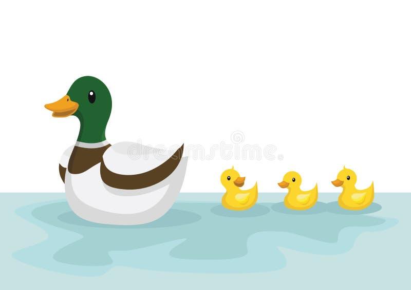 De eenden zwemmen in de vijver royalty-vrije illustratie