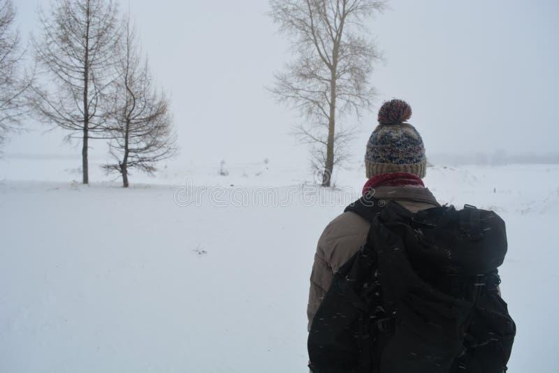 De eenzame reiziger stock foto's