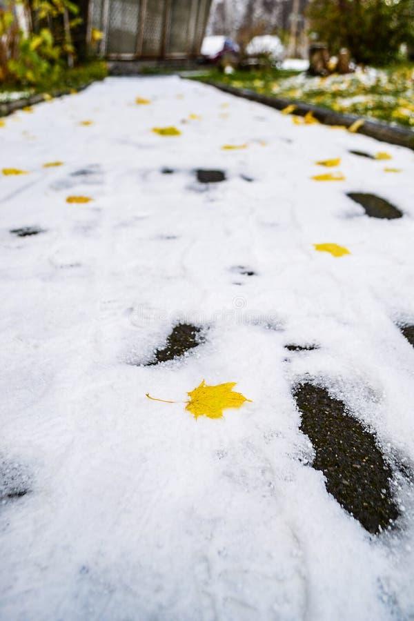 De eerste sneeuw Esdoornbladeren op snow-covered voetpad royalty-vrije stock afbeelding