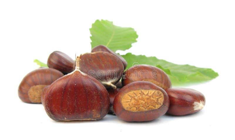 De eetbare noten van kastanjes op wit royalty-vrije stock afbeelding