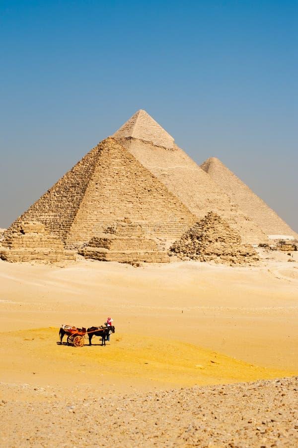 De Egyptische Piramides Giza van Toeristen stock afbeeldingen