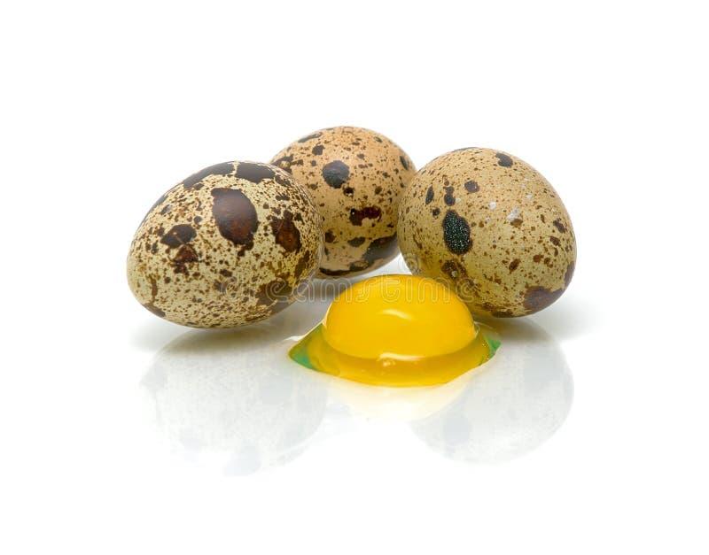 De eieren en de eierdooier van kwartels op een witte achtergrond stock afbeeldingen