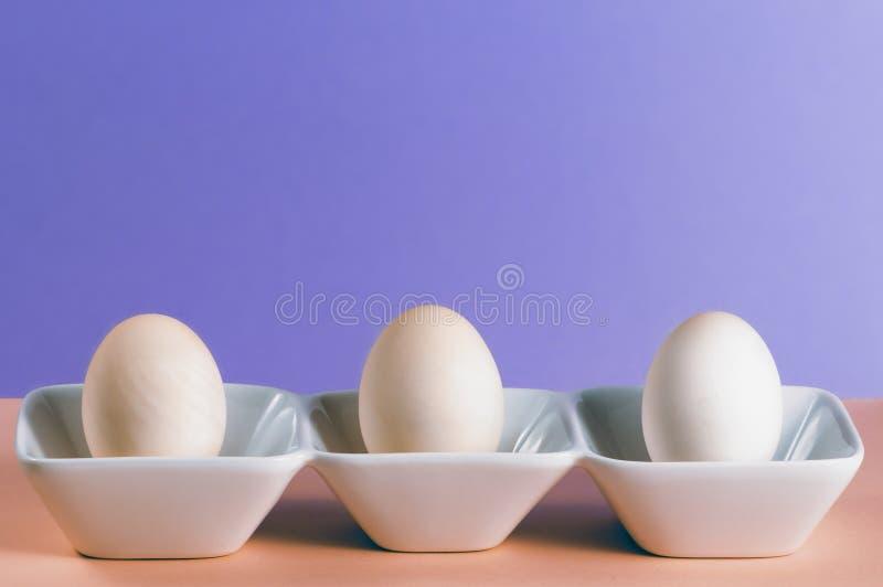De Eieren van de eend stock afbeelding