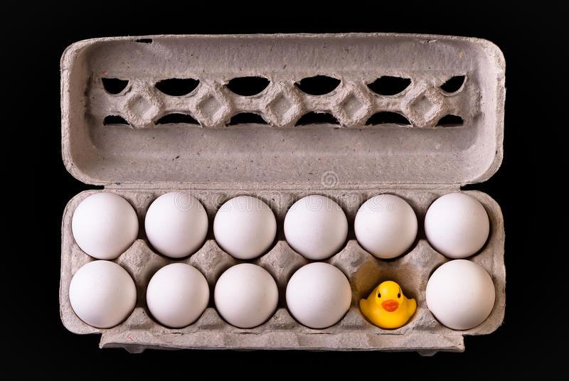 De Eieren van Ducky royalty-vrije stock afbeelding