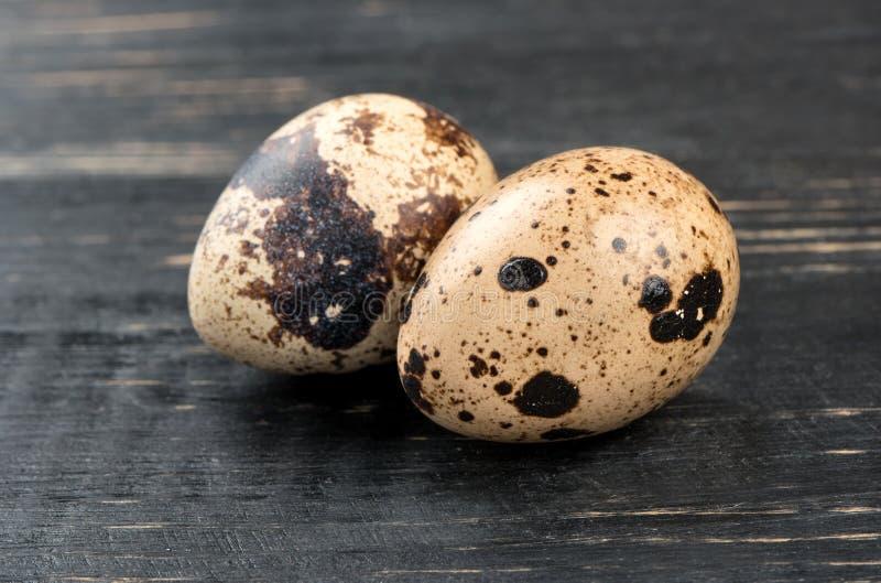 De eieren van kwartels stock afbeeldingen