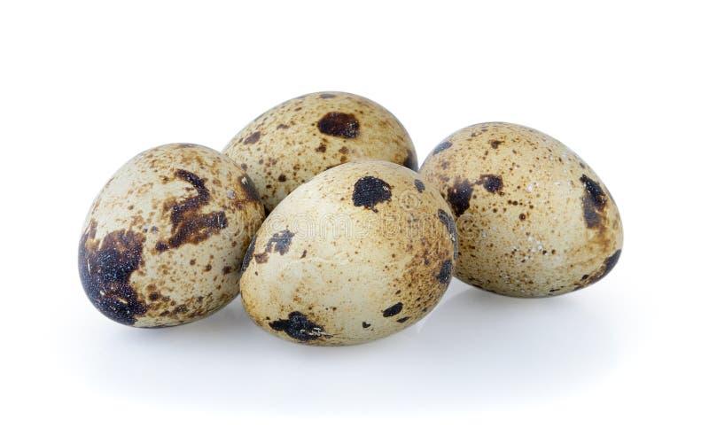 De eieren van kwartels die op witte achtergrond worden geïsoleerd stock afbeelding