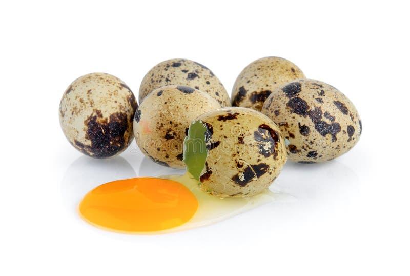 De eieren van kwartels op witte achtergrond stock foto