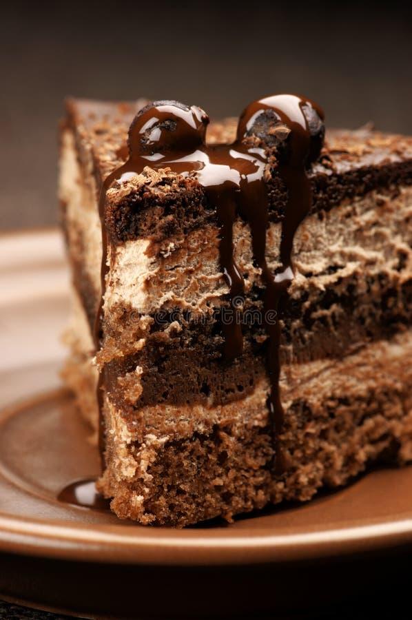 De eigengemaakte close-up van de chocoladecake stock foto