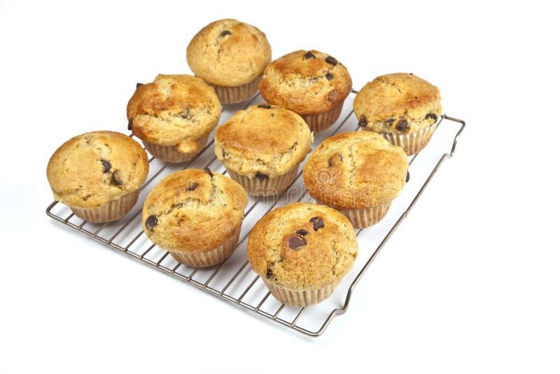 De eigengemaakte Muffins van de Chocoladeschilfer van de Banaan royalty-vrije stock foto