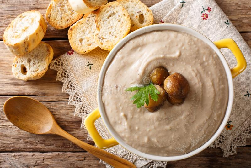 De eigengemaakte soep van de roomkastanje in een steelpanclose-up horizontaal stock afbeelding
