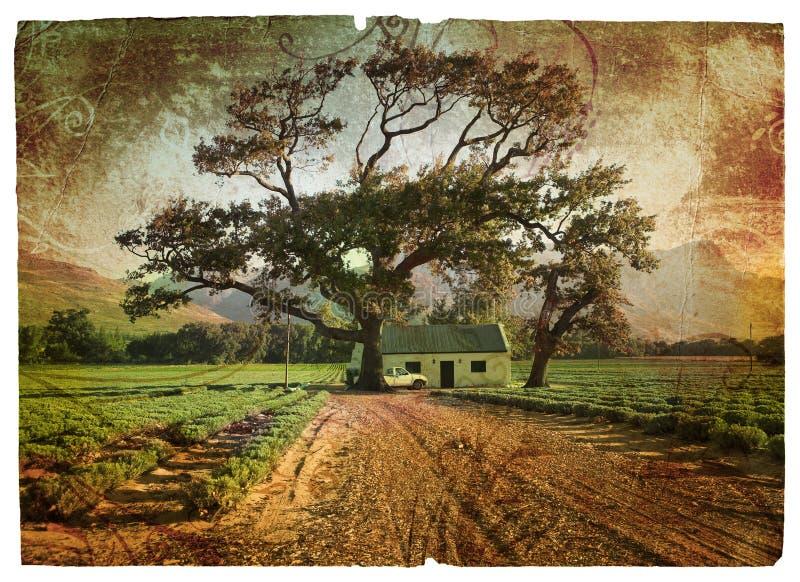 De eik en de lavendel van Grunge royalty-vrije illustratie